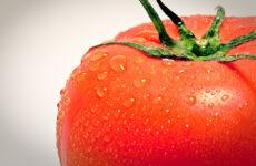 Wat zou een mogelijk nieuw product kunnen zijn waarvan de basisgrondstof tomaat is?